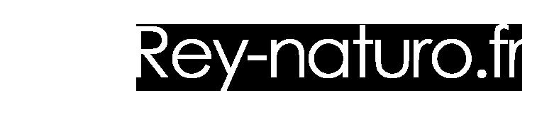 Rey Naturo - Naturopathe et réflexologue plantaire